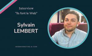 Sylvain Lembert, Webmarketing et Com