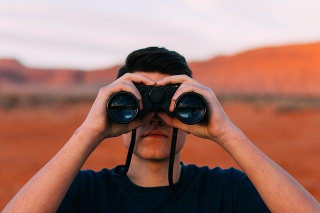 Les axes de surveillance : le commencement de la veille